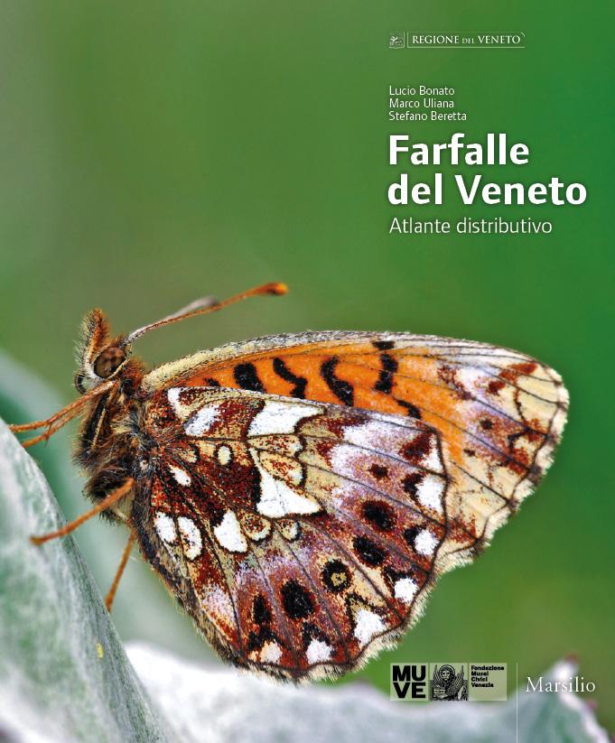 Farfalle del Veneto. Atlante distributivo